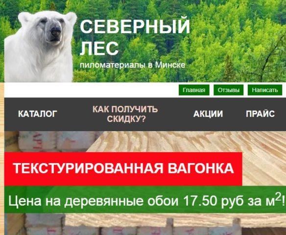 Северный лес в Минске